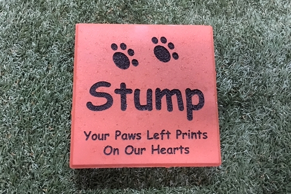 Engraved Paver 8x8