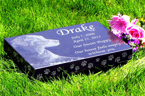 Premium Absolute Black Granite Memorials With Paw Print Edging